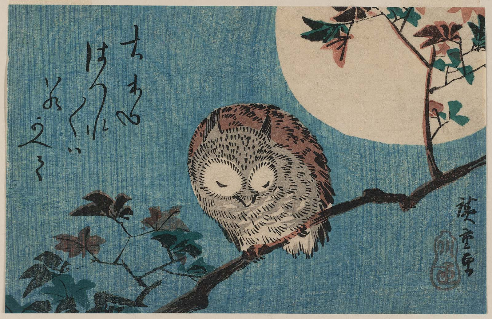 Libro Dmt Small Horned Owl On Maple Branch Under Full Moon | Museum