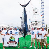 1st Place Blue Marlin | Photo by Alaric Lambert