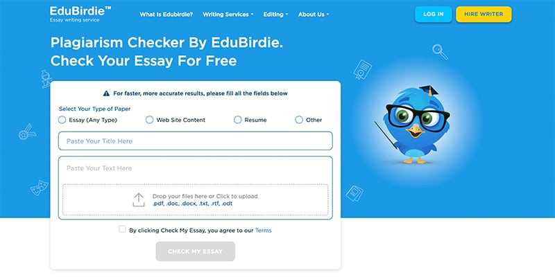 Plagiarism checker How to detect content theft and remove stolen