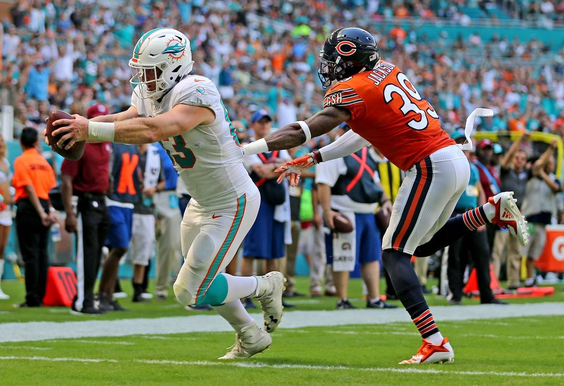 O Miami Miami Dolphins Extend Tight End O Leary S Contract Through 2019