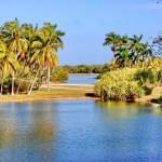 Fairchild Tropical Botanical Garden