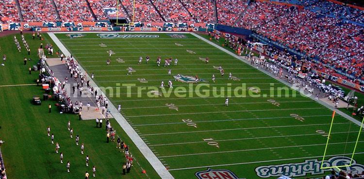 Miami Dolphins - Miami Sports - Miami Travel Guide