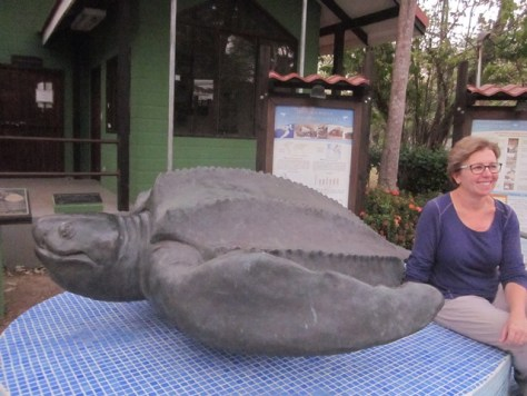Science teacher Justine Hochstaedter poses next to a life-size leatherback turtle statue