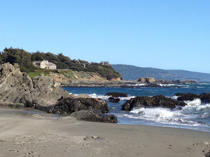 Each afternoon we take walks along the beautiful Northern California coastline.