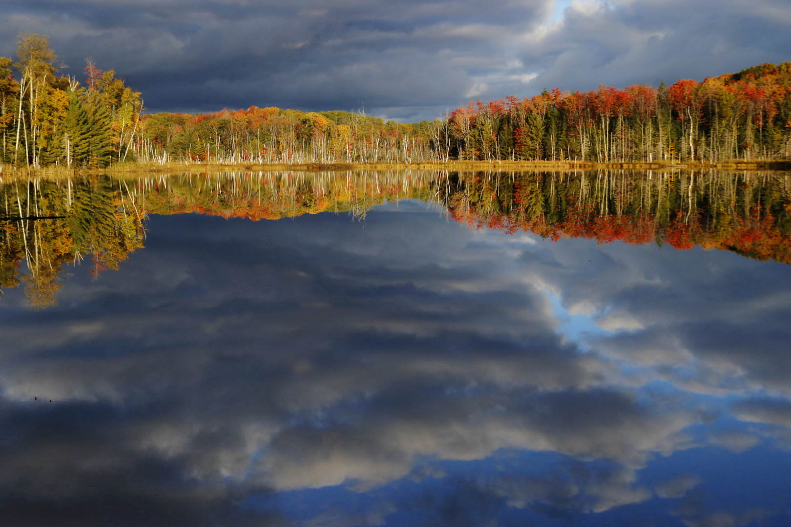 Fall Wallpaper Pinterest Red Jack Lake Sunrise Michigan In Pictures