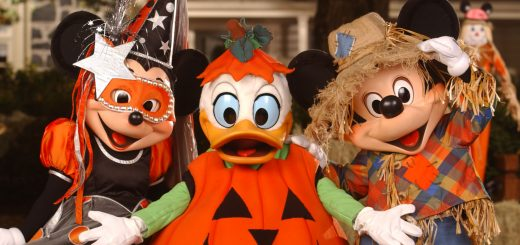 Everything you need to know about MNSSHP