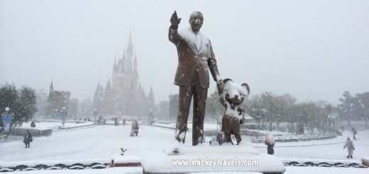Snow at Disney