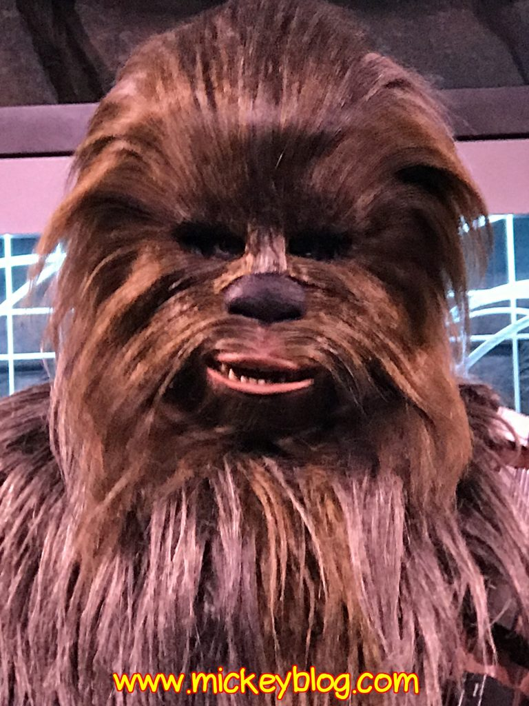 Chewbaca meet and greet