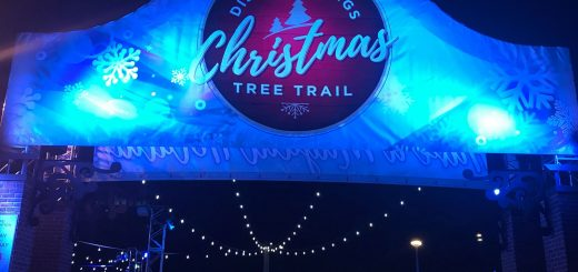 Christmas Tree Trail