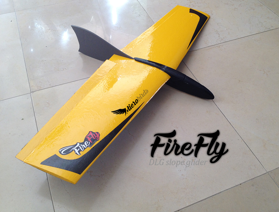 Ultralight Flight Micro Dlg Gliders Ultralight Slope Rc Gliders – Gliders