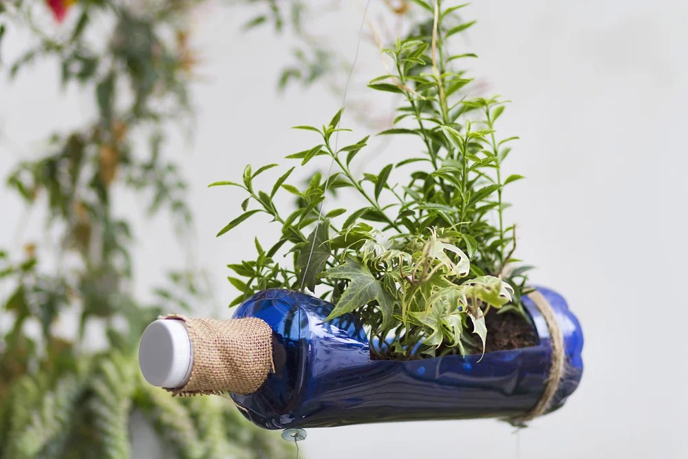 Ideas Para Decorar Una Azotea 2 Ideas Con Botellas Recicladas Para Decorar Tu Jardín