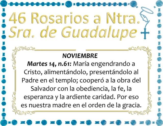 46 ROSARIOS A NUESTRA SEÑORA DE GUADALUPE DÍA 19