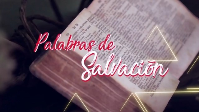 VIDEO: PALABRAS DE SALVACIÓN DÍA 11