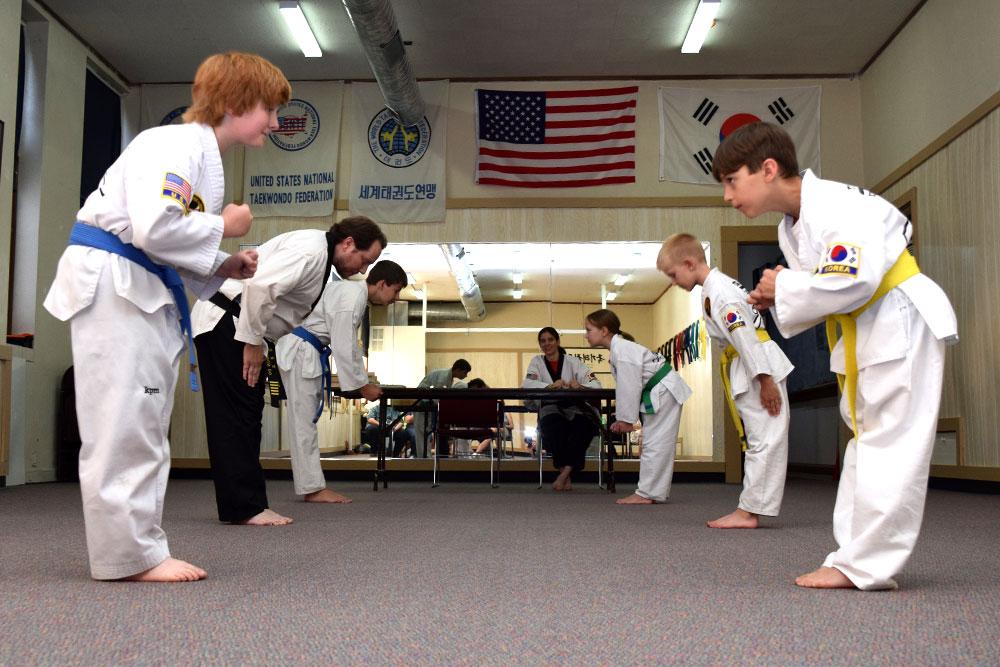 Midtown Martial Arts Elburn, Illinois, Taekwondo, Judo, Hapkido, Arnis
