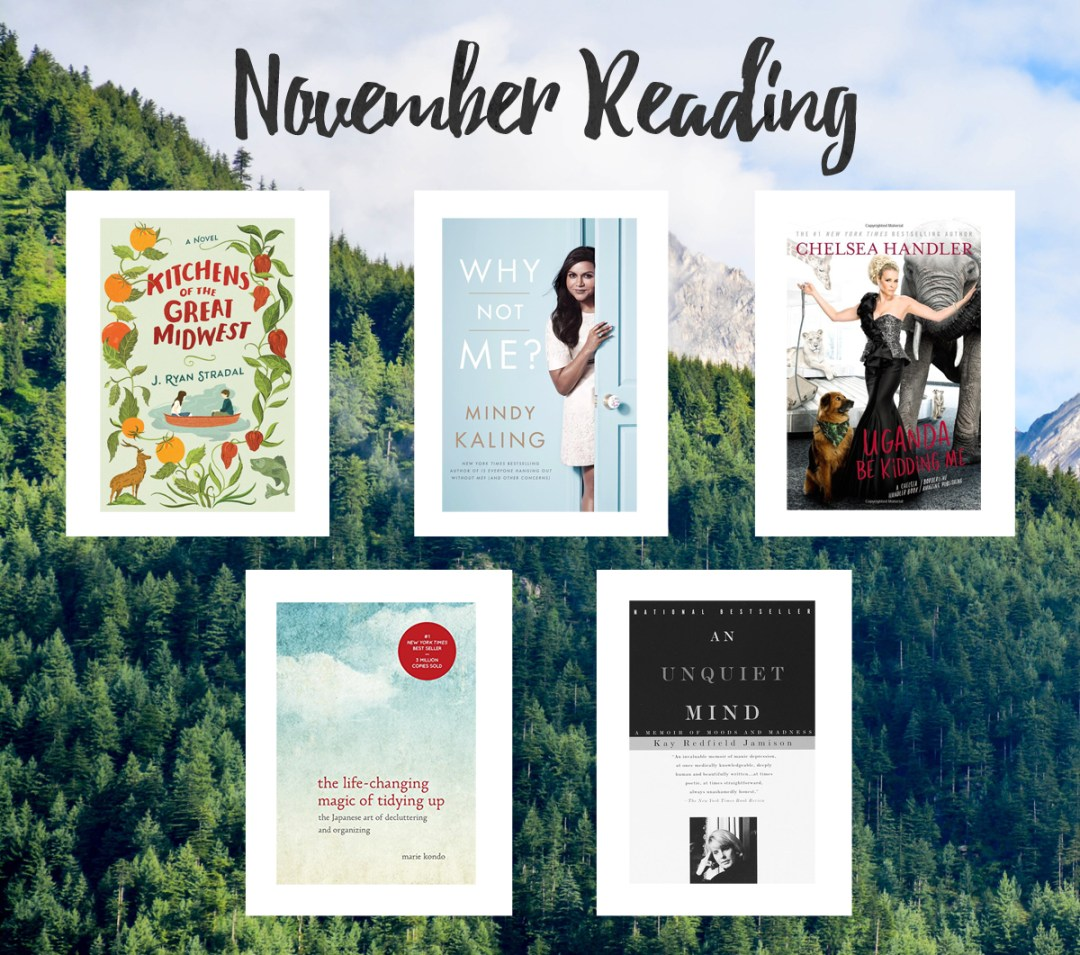 november to-read list