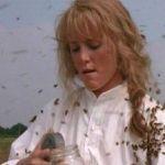 Las abejas coquetean con el cine (II)