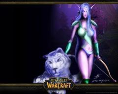 world_warcraft