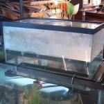 Upside down Aquarium
