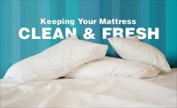 Mattress cleaning in Greenville SC