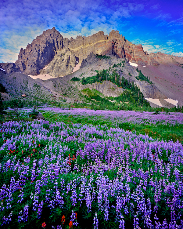 Three Fingered Jack and Canyon Creek Meadow