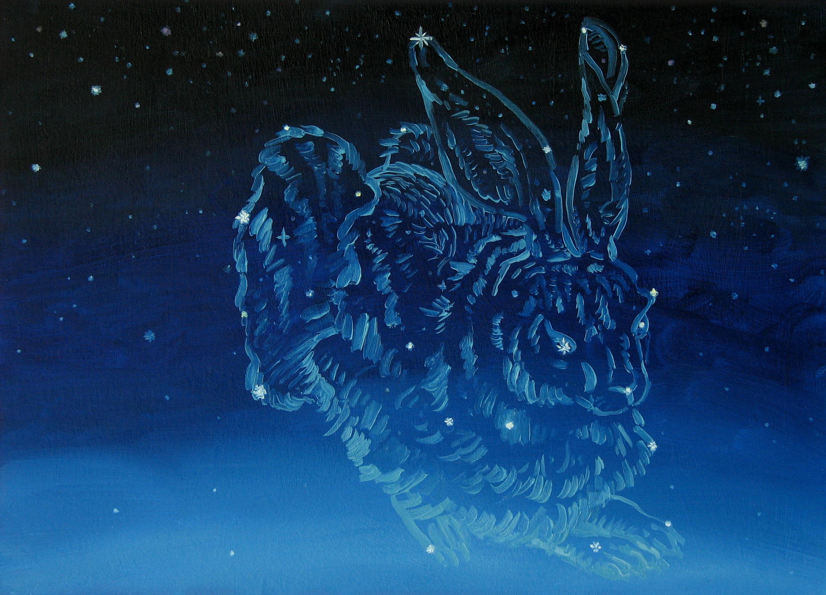 Blue Whale Wallpaper Hd Constellations Mike Schultz Studio Blog