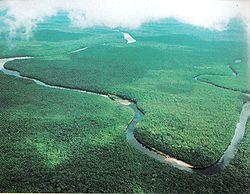 rio-orinoco-milagros-socorro