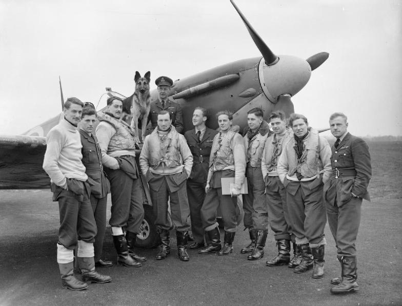 drug recovery wing pilots