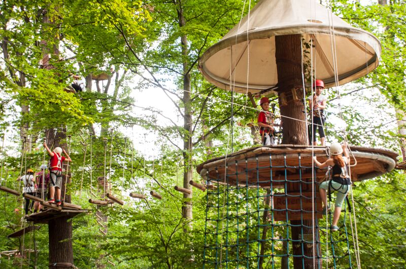 Kletterpark Neroberg Kletterwald In Neroberg - Travel, Events & Culture Tips