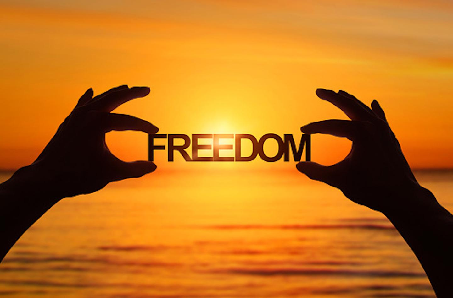 Freedom Picture The Gift Of Freedom The Roar
