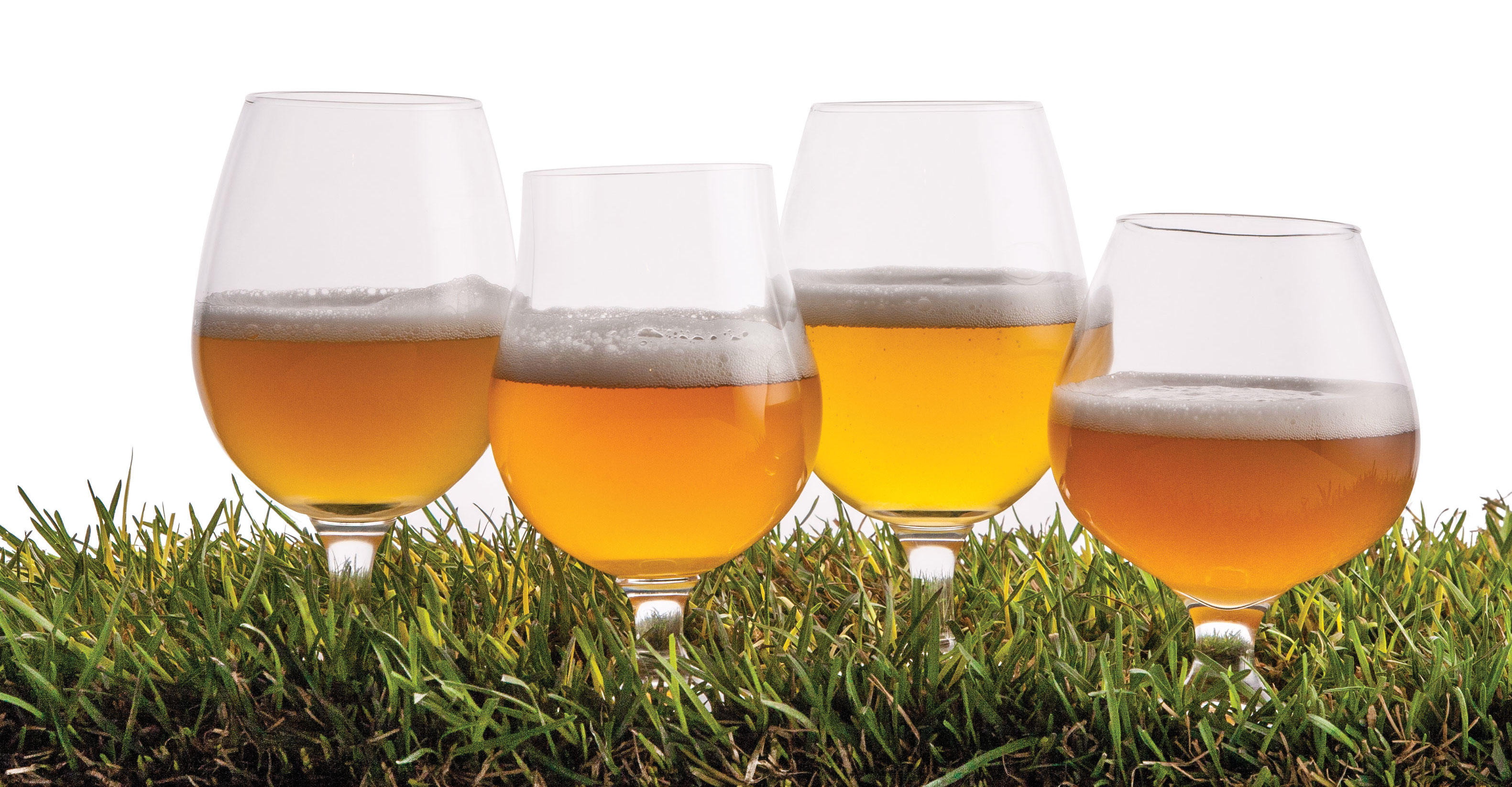 Farmhouse Drinking Glasses Saisons Milwaukee Beer Society