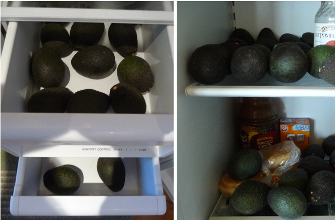 avocados stored in refrigerator