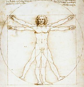cuerpo humano- da vinci