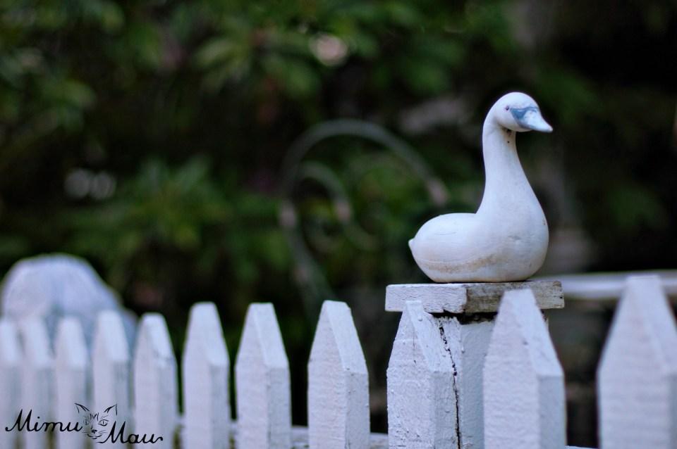 duckfinial