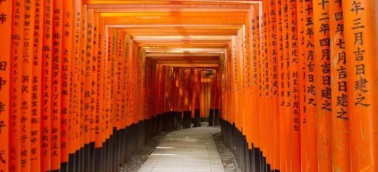 Kioto III: visitar Fushimi Inari y Nara