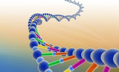 HMI-Blog-You-Can-Change-Your-DNA