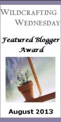 WW Featured Blogger Award Button 2013 August The Ultimate Detox Bath