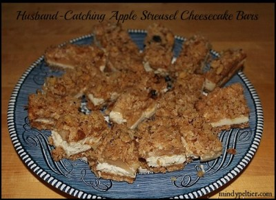 Husband-Catching Apple Streusel Cheesecake Bars ~ Mindy Peltier