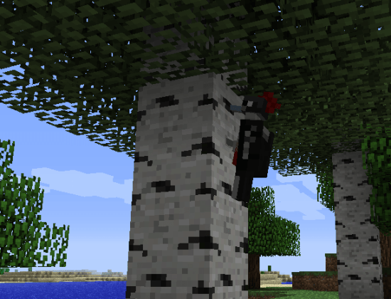 how to put a parrot on your shoulder minecraft
