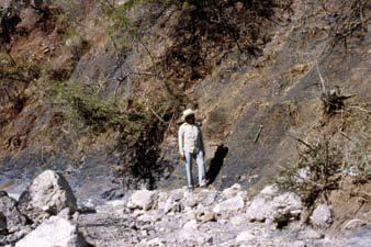 Figura 10. Lutitas y areniscas con horizontes de carbón de la parte inferior del grupo Tecocoyunca, estado de Guerrero.