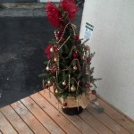 I hate killig a tree for a holiday and I don't care for manufactured trees either, instead, I got a shrub that will be on my porch and will have a little exta jewlery around the holidays.  Yeah for reusable Christmas trees.
