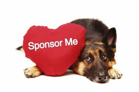 sponsor-me_dog