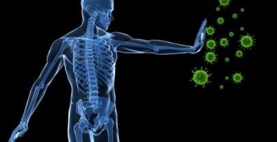 Hoe werkt het immuunsysteem van het menselijke lichaam?