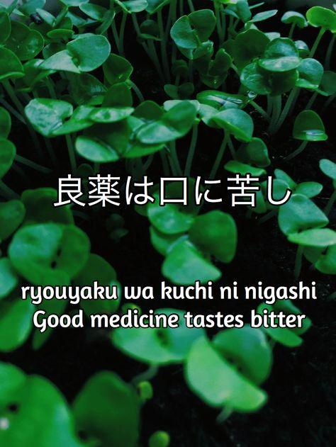 japanse gezegde