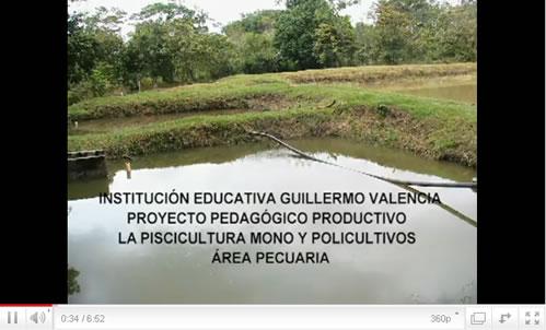 Proyectos Pedagógicos Productivos en la IE Guillermo Valencia – Villagarzón
