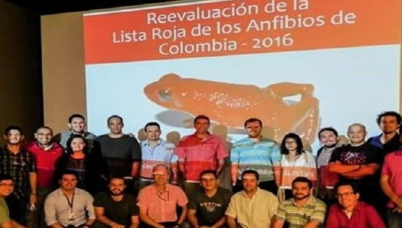 Corpoamazonia presente en Taller de Reevaluación de la Categoría de Amenaza de los Anfibios de Colombia