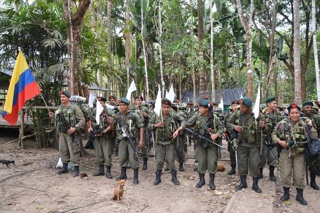 Llegan los primeros guerrilleros de las Farc a la zona veredal de Putumayo