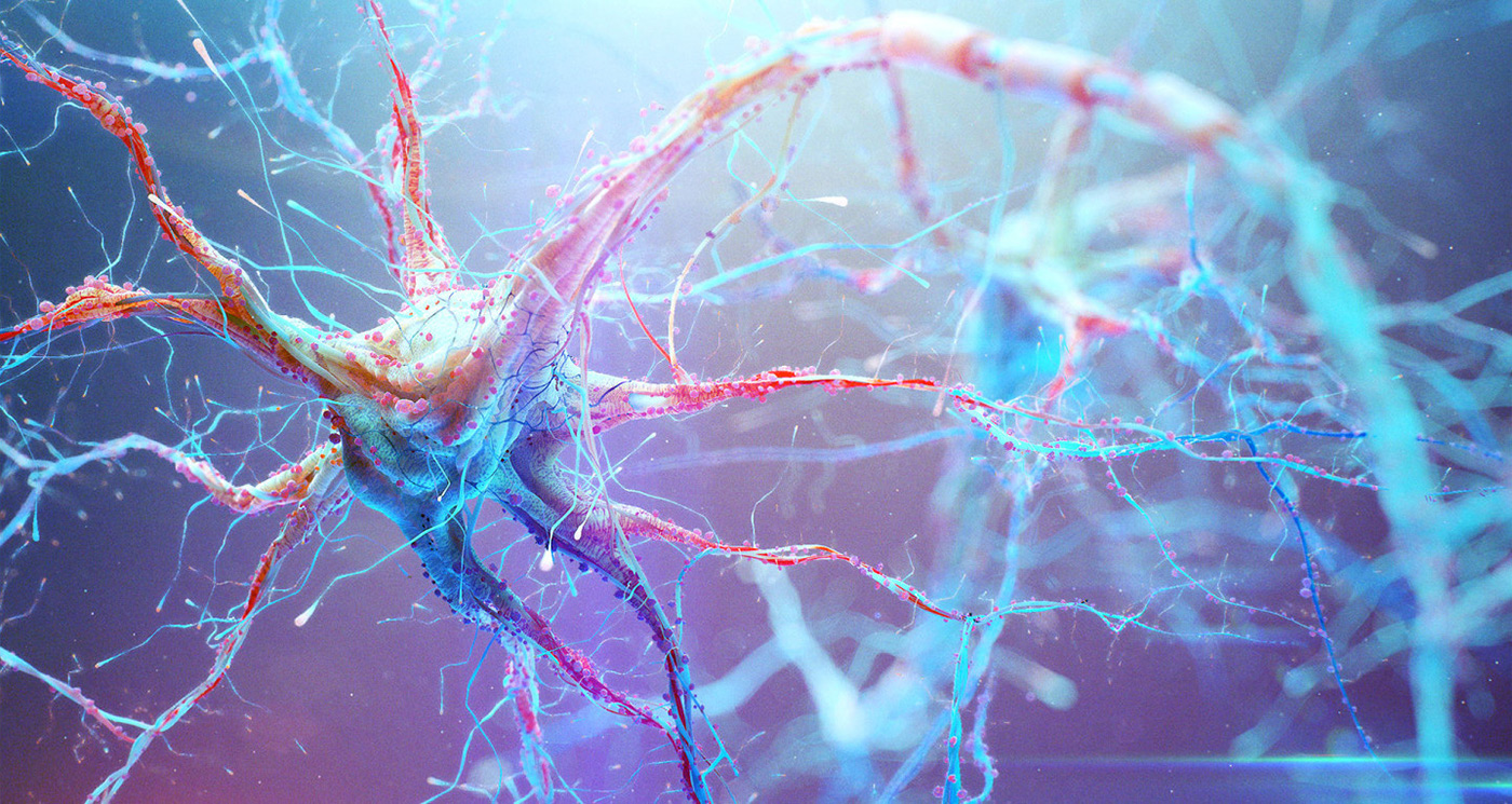 3d Virus Wallpaper Neural Pathways Stills From Movie On Behance