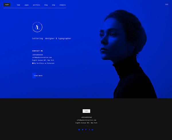 Ion- A Portfolio Theme for Creatives on Pantone Canvas Gallery