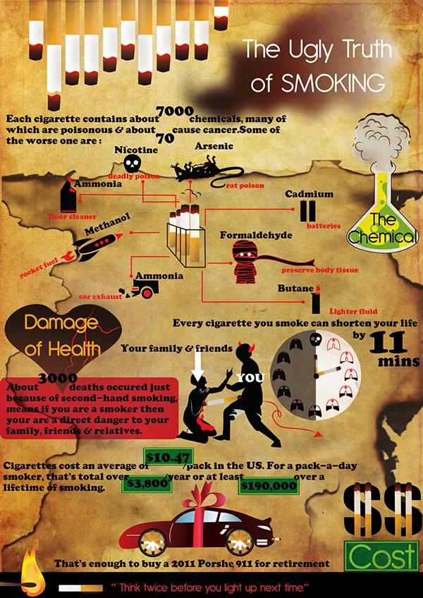 Diagram design- Information Poster Design on Student Show