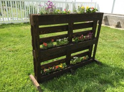 Small Of Pallet Gardens Images